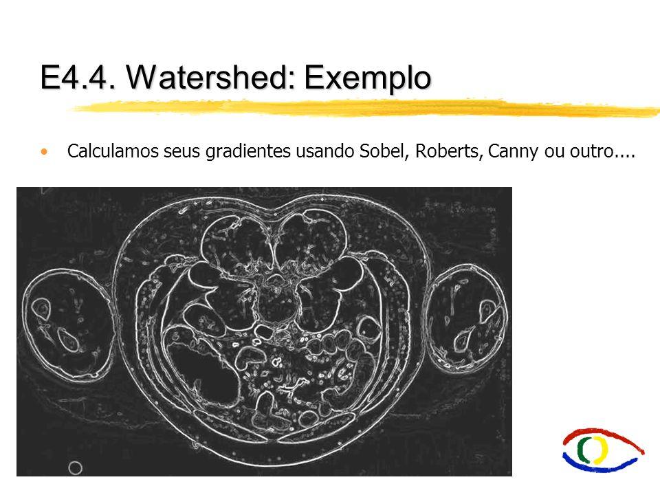 E4.4. Watershed: Exemplo Calculamos seus gradientes usando Sobel, Roberts, Canny ou outro....