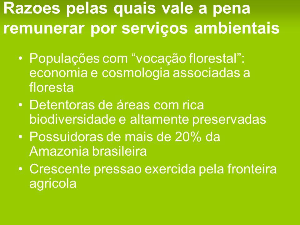 Razoes pelas quais vale a pena remunerar por serviços ambientais Populações com vocação florestal: economia e cosmologia associadas a floresta Detentoras de áreas com rica biodiversidade e altamente preservadas Possuidoras de mais de 20% da Amazonia brasileira Crescente pressao exercida pela fronteira agricola
