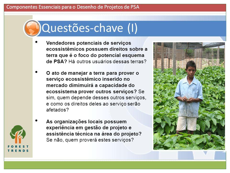 Vendedores potenciais de serviços ecossistêmicos possuem direitos sobre a terra que é o foco do potencial esquema de PSA? Há outros usuários dessas te