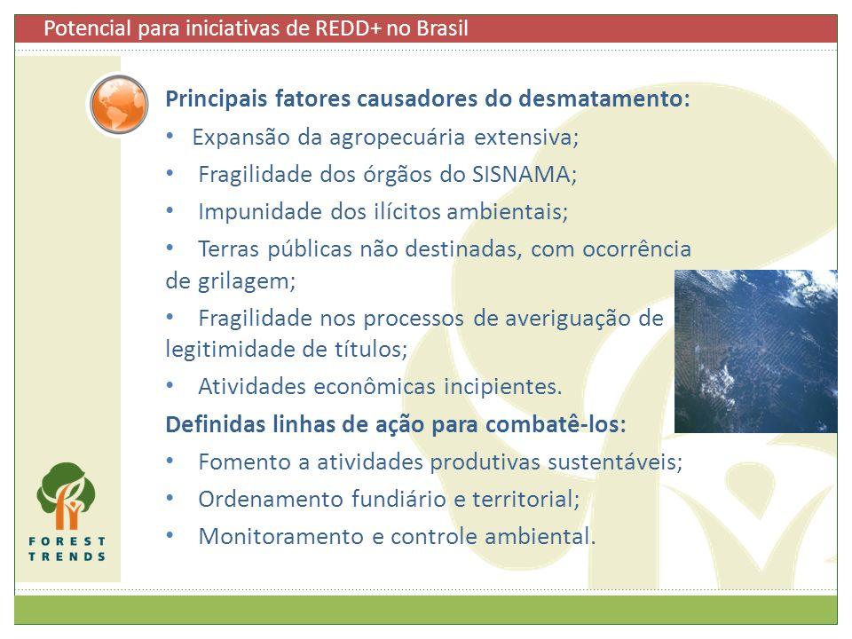 Principais fatores causadores do desmatamento: Expansão da agropecuária extensiva; Fragilidade dos órgãos do SISNAMA; Impunidade dos ilícitos ambienta