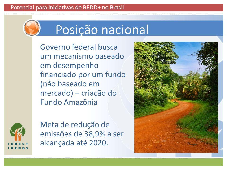 Governo federal busca um mecanismo baseado em desempenho financiado por um fundo (não baseado em mercado) – criação do Fundo Amazônia Meta de redução
