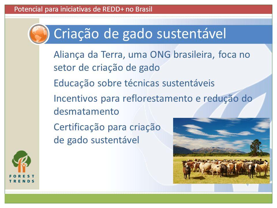 Aliança da Terra, uma ONG brasileira, foca no setor de criação de gado Educação sobre técnicas sustentáveis Incentivos para reflorestamento e redução