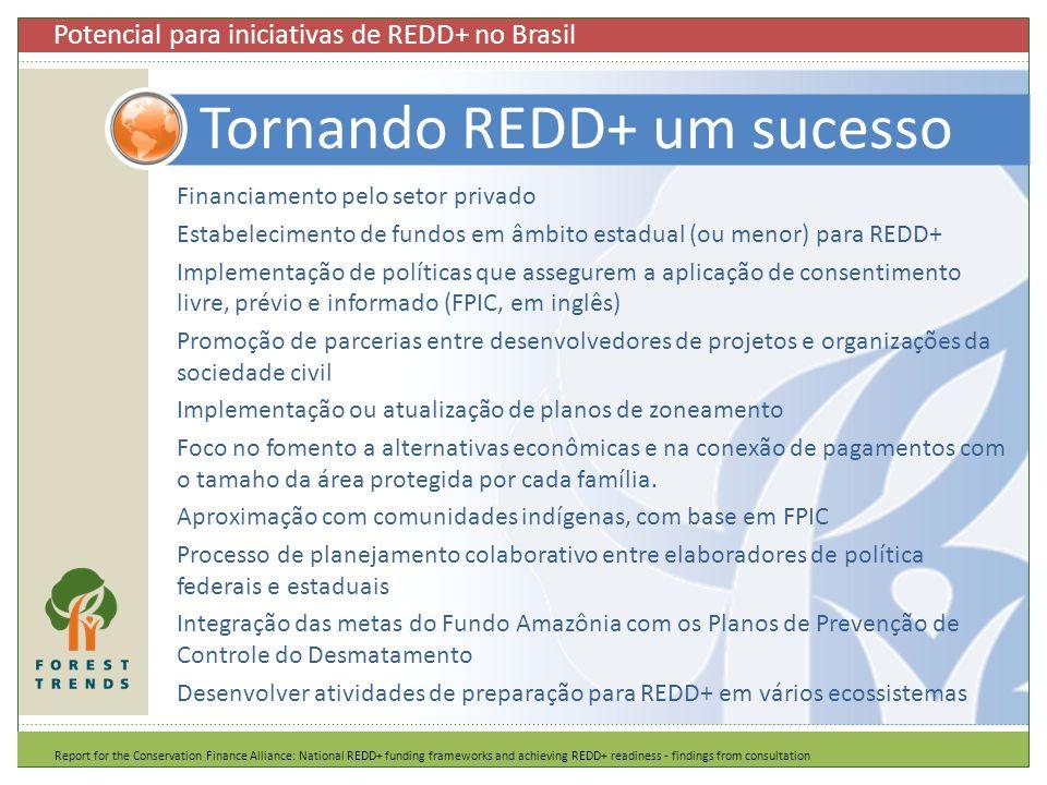 Financiamento pelo setor privado Estabelecimento de fundos em âmbito estadual (ou menor) para REDD+ Implementação de políticas que assegurem a aplicaç