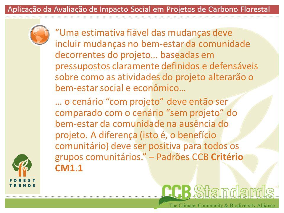 Uma estimativa fiável das mudanças deve incluir mudanças no bem-estar da comunidade decorrentes do projeto… baseadas em pressupostos claramente defini
