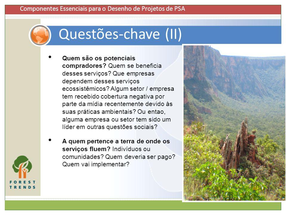 Questões-chave (II) 7 Quem são os potenciais compradores? Quem se beneficia desses serviços? Que empresas dependem desses serviços ecossistêmicos? Alg