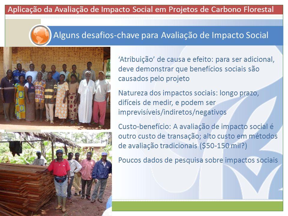 Atribuição de causa e efeito: para ser adicional, deve demonstrar que benefícios sociais são causados pelo projeto Natureza dos impactos sociais: long
