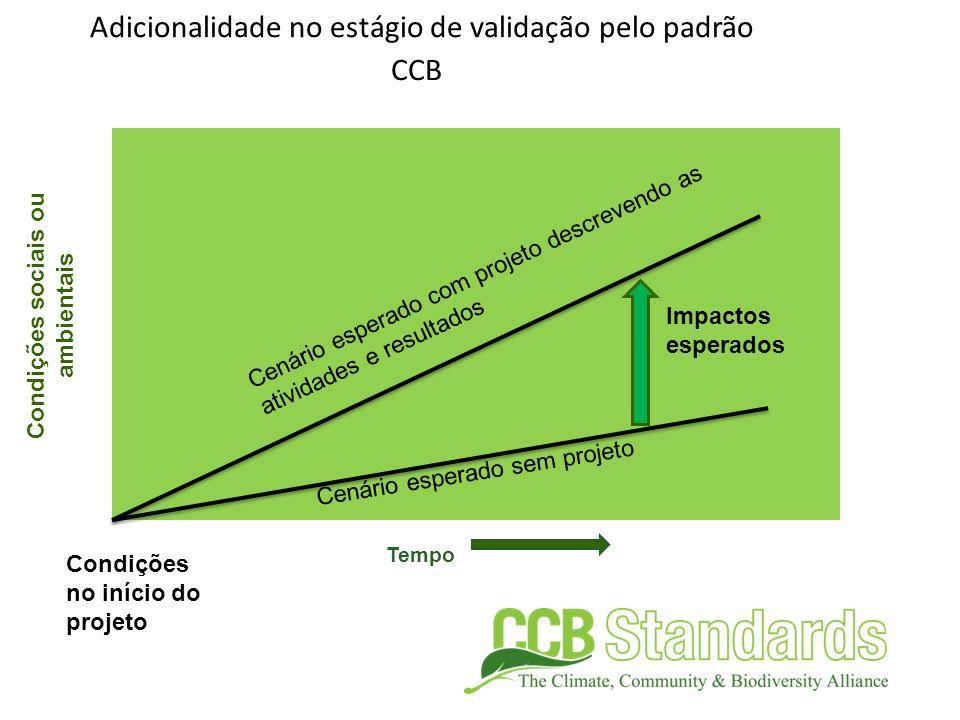 Tempo Condições sociais ou ambientais Adicionalidade no estágio de validação pelo padrão CCB Condições no início do projeto Impactos esperados Cenário