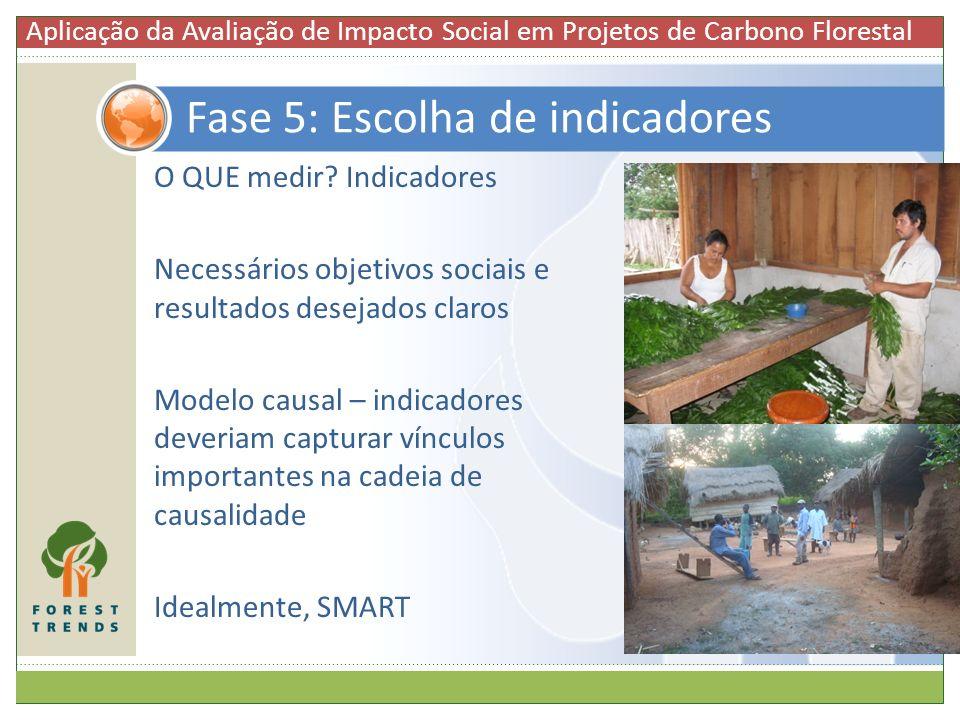 O QUE medir? Indicadores Necessários objetivos sociais e resultados desejados claros Modelo causal – indicadores deveriam capturar vínculos importante