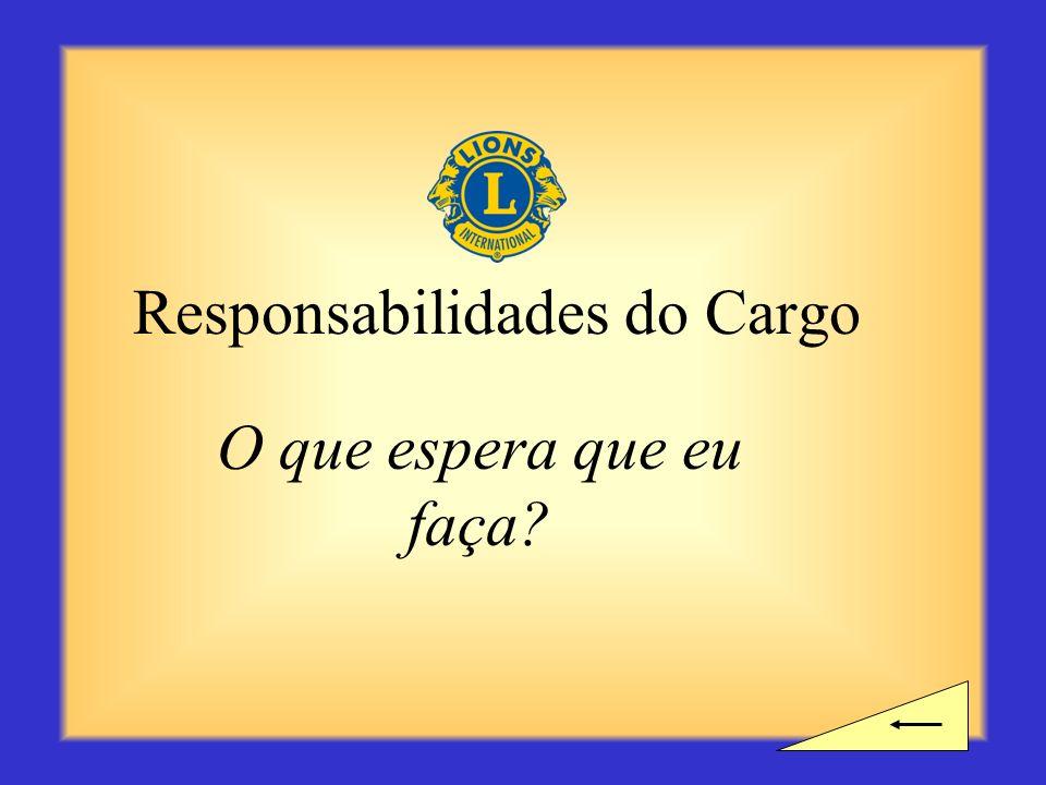 Responsabilidades do Cargo O que espera que eu faça?