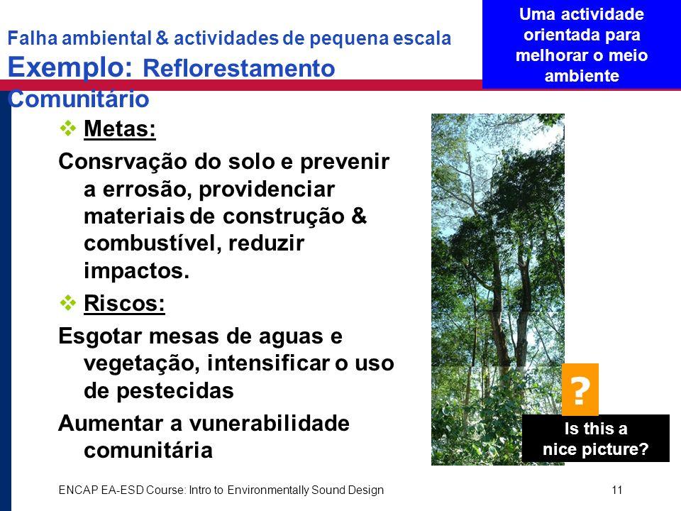 ENCAP EA-ESD Course: Intro to Environmentally Sound Design11 Falha ambiental & actividades de pequena escala Exemplo: Reflorestamento Comunitário Meta