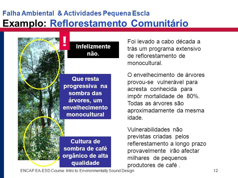 ENCAP EA-ESD Course: Intro to Environmentally Sound Design12 Infelizmente não. ! Que resta progressiva na sombra das árvores, um envelhecimento monocu