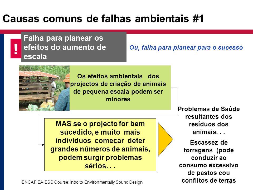 ENCAP EA-ESD Course: Intro to Environmentally Sound Design14 Causas comuns de falhas ambientais #1 Falha para planear os efeitos do aumento de escala
