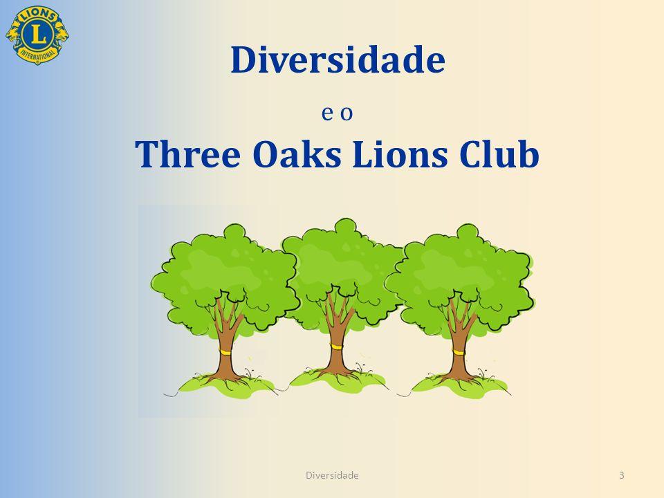 Diversidade e o Three Oaks Lions Club Diversidade3