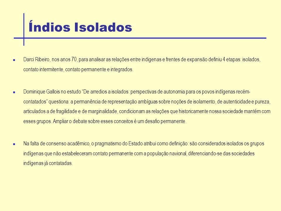 Índios Isolados Darci Ribeiro, nos anos 70, para analisar as relações entre indigenas e frentes de expansão definiu 4 etapas: isolados, contato intermitente, contato permanente e integrados.