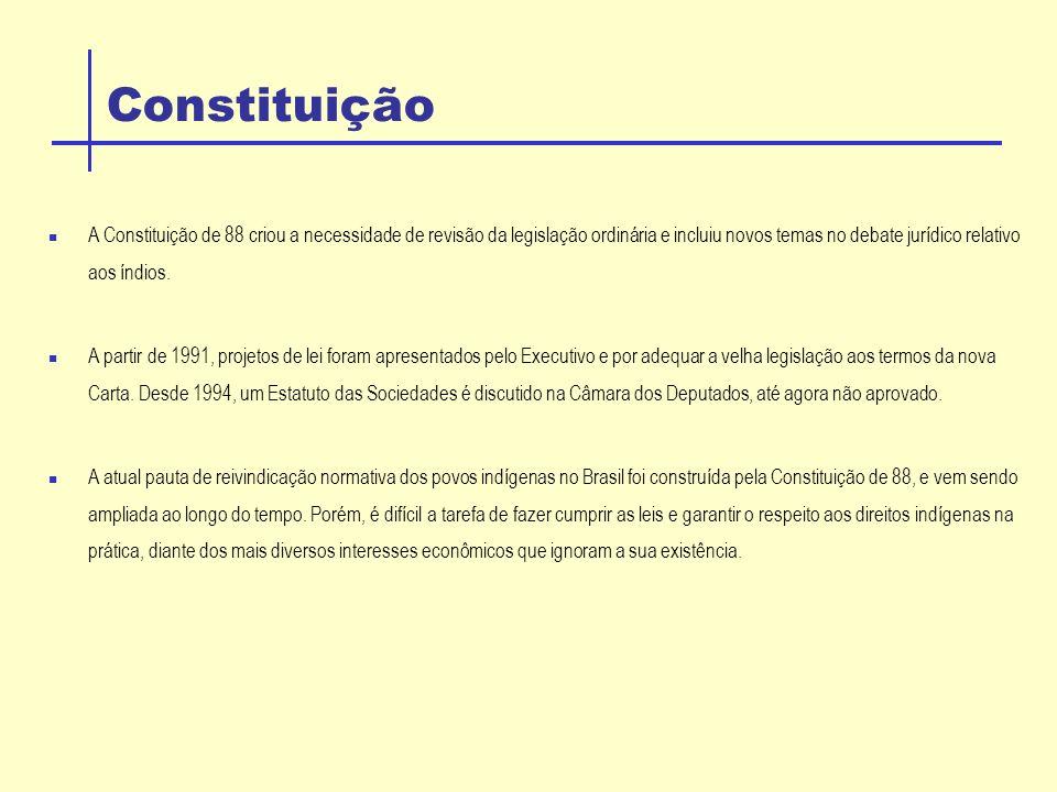 Capacidade Civil do Indio O Estatuto do Índio ( lei 6.001.de 1973), dispõe sobre as relações do Estado e da sociedade brasileira com os índios.