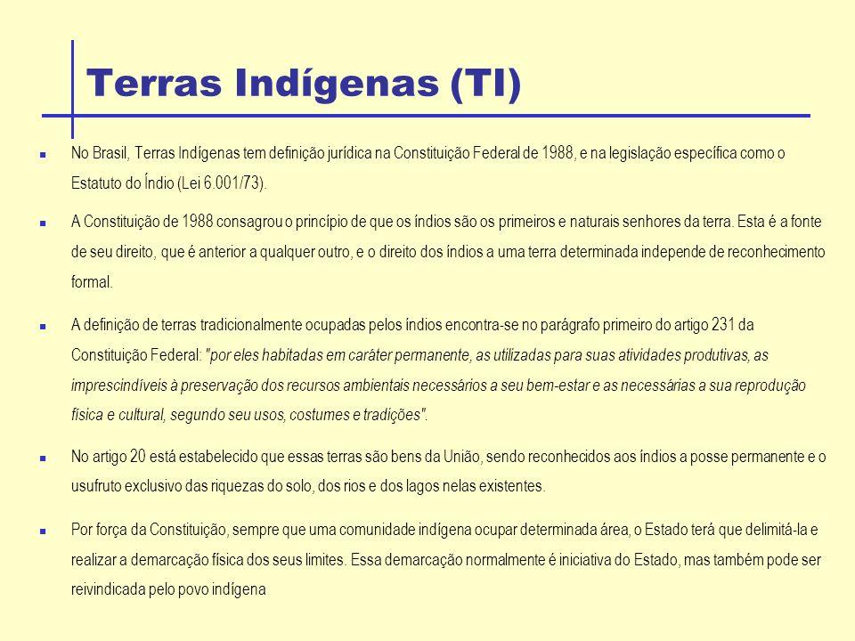 Terras Indígenas (TI) No Brasil, Terras Indígenas tem definição jurídica na Constituição Federal de 1988, e na legislação específica como o Estatuto do Índio (Lei 6.001/73).