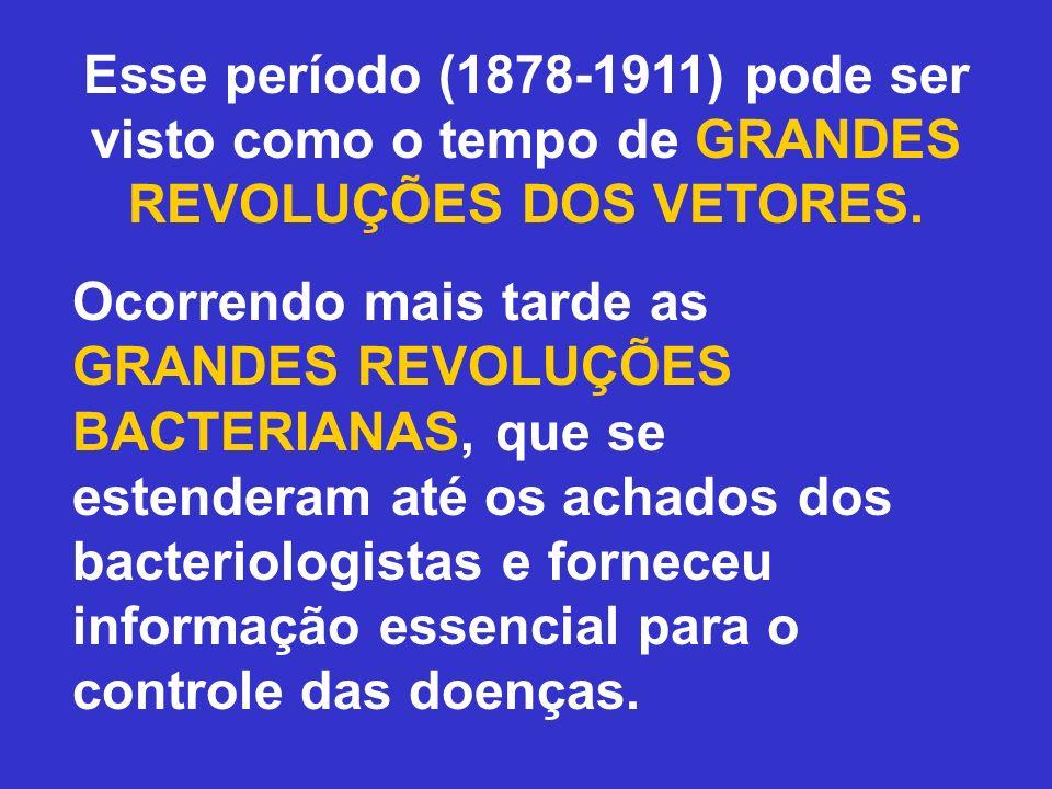 Esse período (1878-1911) pode ser visto como o tempo de GRANDES REVOLUÇÕES DOS VETORES. Ocorrendo mais tarde as GRANDES REVOLUÇÕES BACTERIANAS, que se