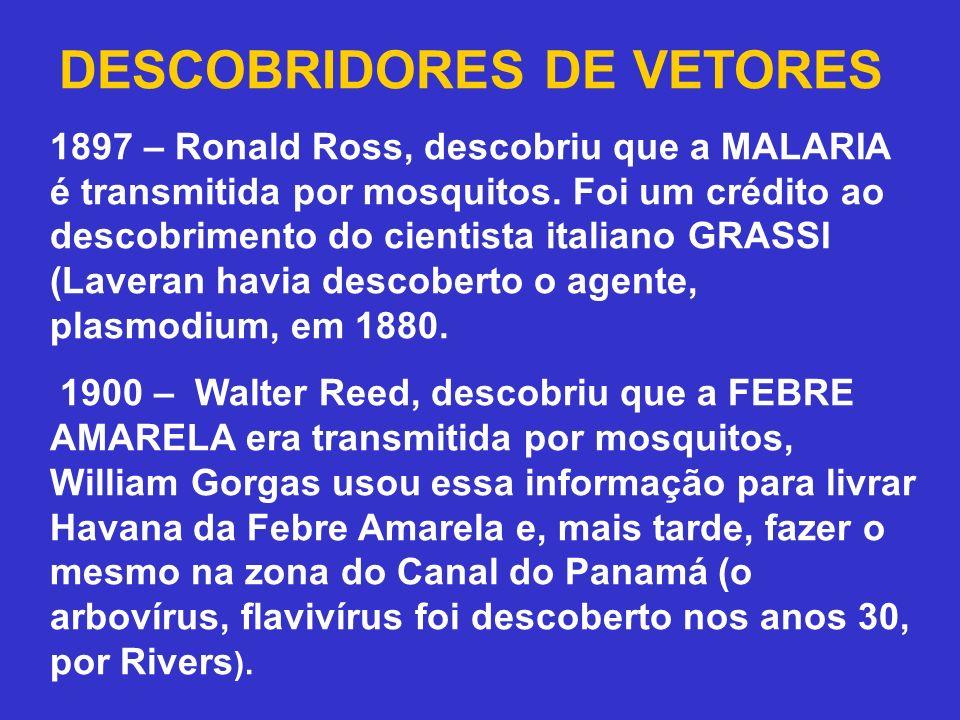 DESCOBRIDORES DE VETORES 1897 – Ronald Ross, descobriu que a MALARIA é transmitida por mosquitos. Foi um crédito ao descobrimento do cientista italian