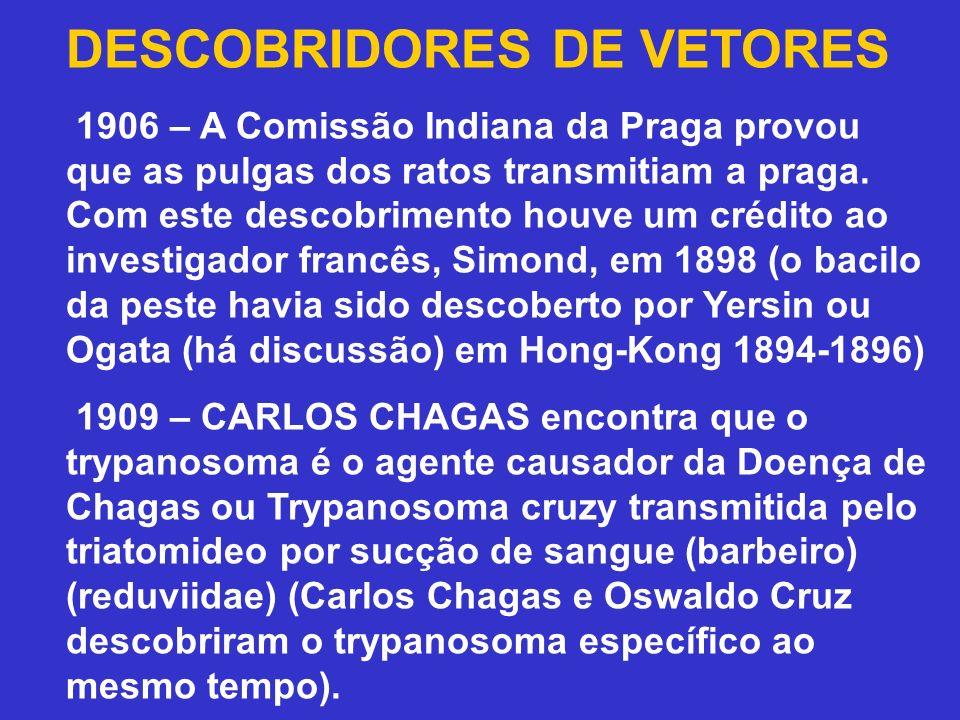 DESCOBRIDORES DE VETORES 1906 – A Comissão Indiana da Praga provou que as pulgas dos ratos transmitiam a praga. Com este descobrimento houve um crédit