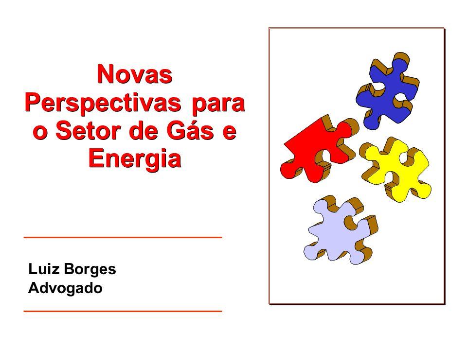 Projeto de Lei sobre a Parceria Público- Privada Luiz Borges Advogado Aspectos Legais da Parceria Público- Privada no Brasil