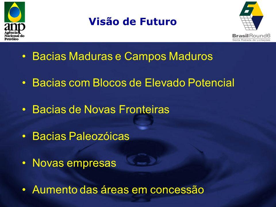 Visão de Futuro Bacias Maduras e Campos Maduros Bacias com Blocos de Elevado Potencial Bacias de Novas Fronteiras Bacias Paleozóicas Novas empresas Au