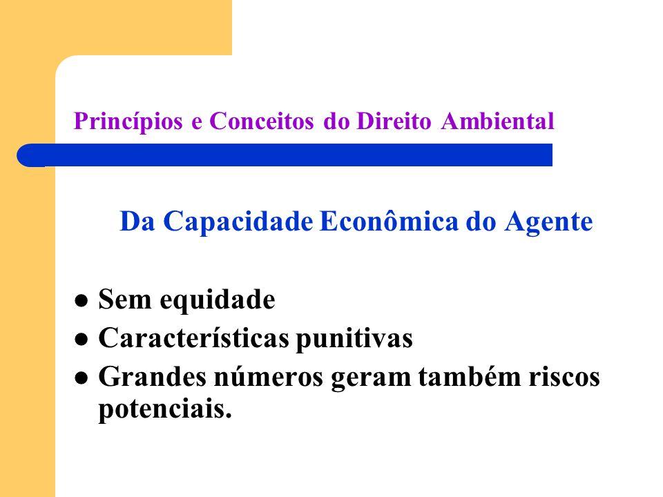 Princípios e Conceitos do Direito Ambiental Da Capacidade Econômica do Agente Sem equidade Características punitivas Grandes números geram também riscos potenciais.