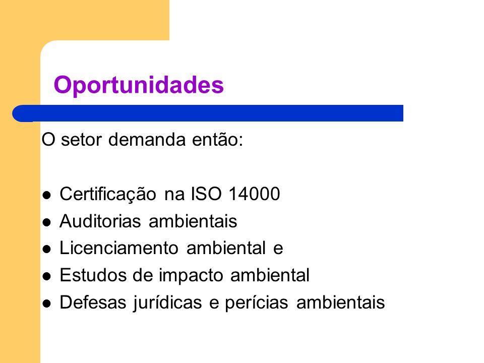 Oportunidades O setor demanda então: Certificação na ISO 14000 Auditorias ambientais Licenciamento ambiental e Estudos de impacto ambiental Defesas jurídicas e perícias ambientais