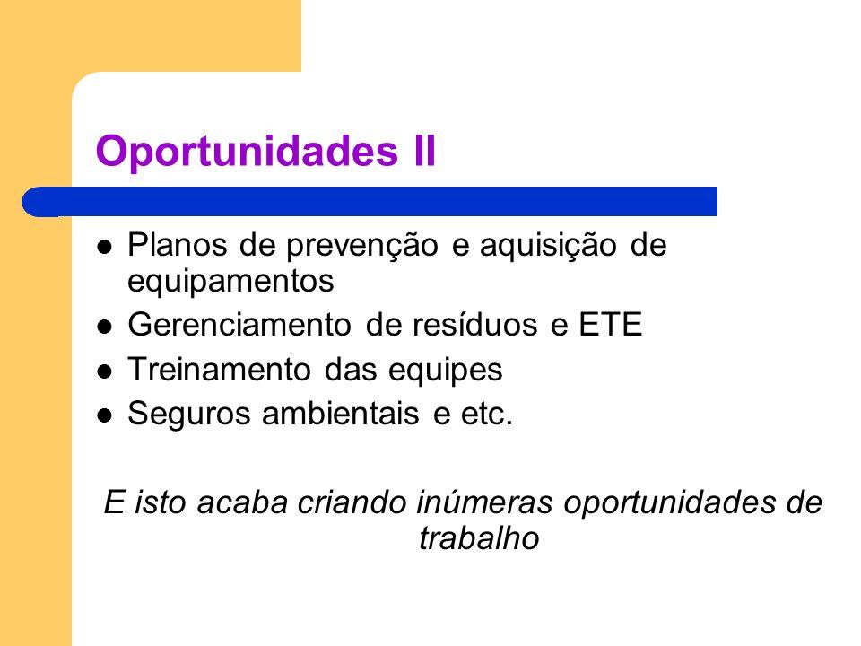 Oportunidades II Planos de prevenção e aquisição de equipamentos Gerenciamento de resíduos e ETE Treinamento das equipes Seguros ambientais e etc. E i