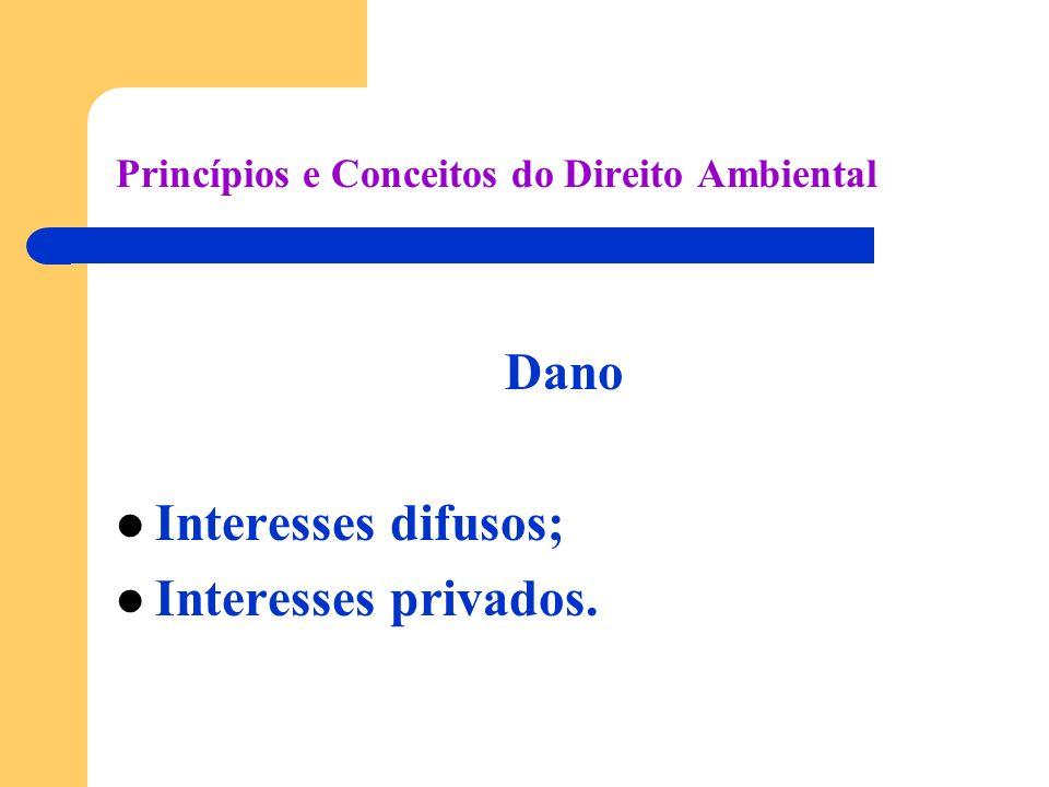 Princípios e Conceitos do Direito Ambiental Dano Interesses difusos; Interesses privados.