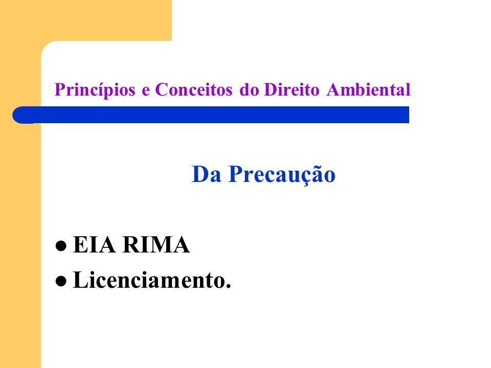 Princípios e Conceitos do Direito Ambiental Da Precaução EIA RIMA Licenciamento.