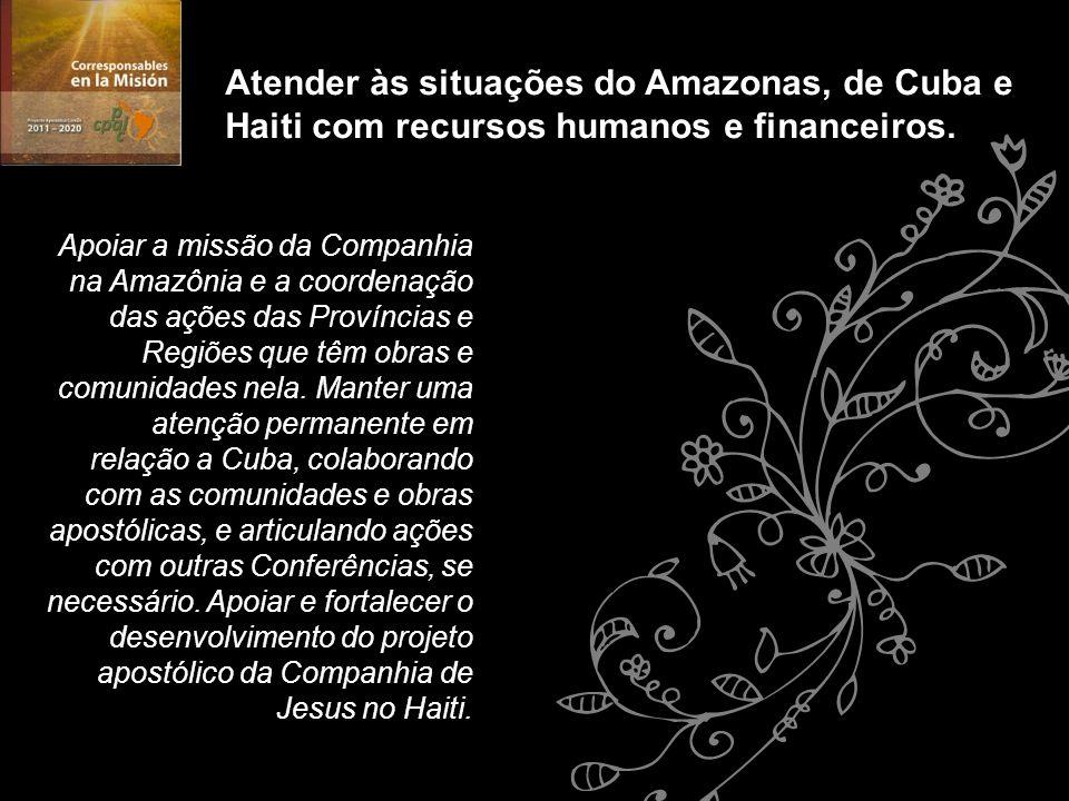 Apoiar a missão da Companhia na Amazônia e a coordenação das ações das Províncias e Regiões que têm obras e comunidades nela. Manter uma atenção perma