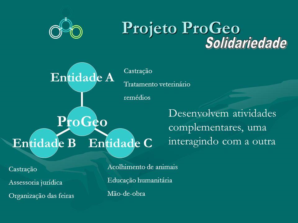Projeto ProGeo Projeto ProGeo ProGeo Entidade A Entidade C Entidade B Castração Tratamento veterinário remédios Castração Assessoria jurídica Organiza