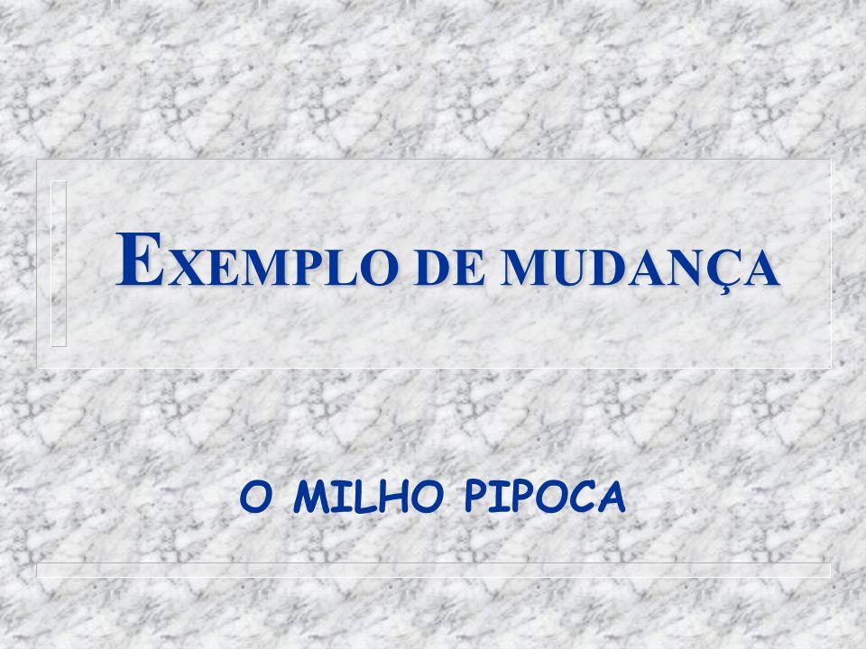 E XEMPLO DE MUDANÇA O MILHO PIPOCA