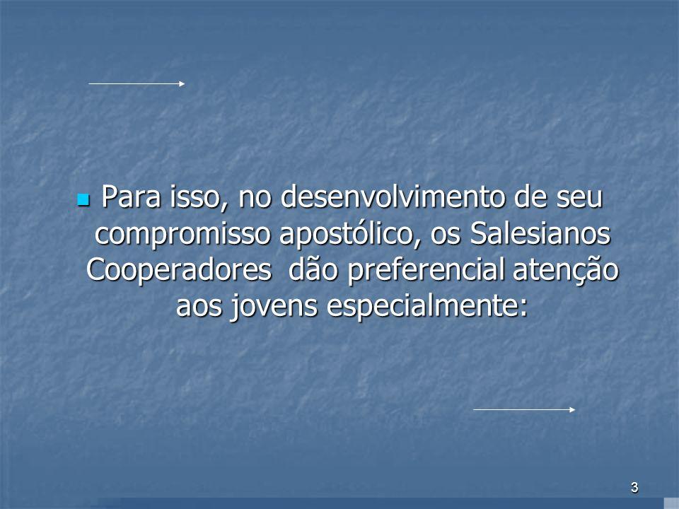14 Questão 02 Qual é a maior preocupação do Salesiano Cooperador em sua ação a favor da Juventude.