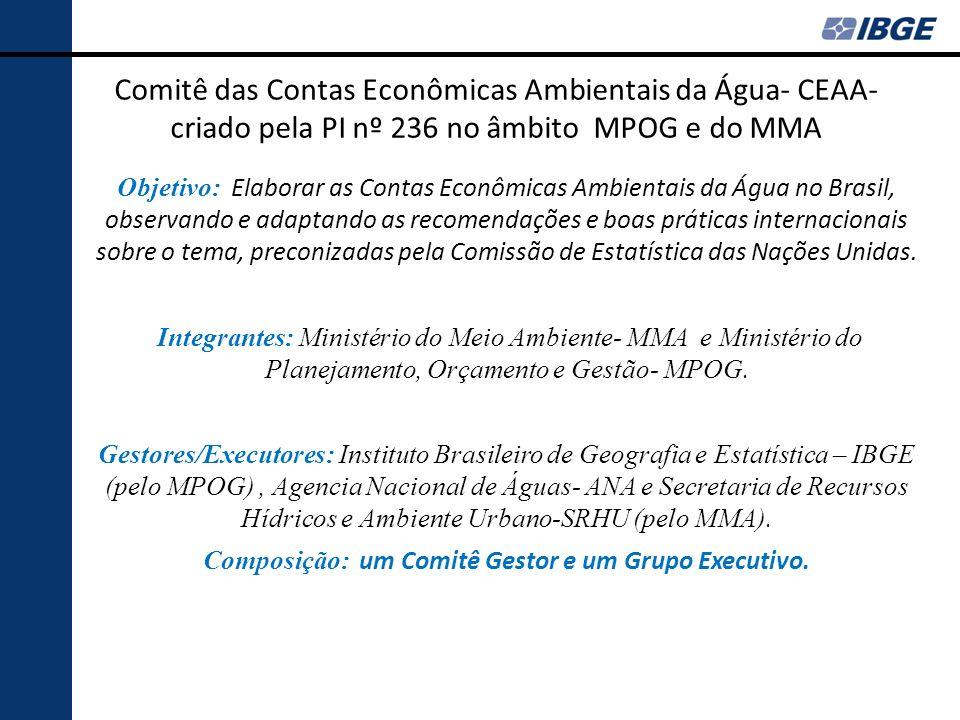 Comitê das Contas Econômicas Ambientais da Água- CEAA- criado pela PI nº 236 no âmbito MPOG e do MMA Objetivo: Elaborar as Contas Econômicas Ambientai