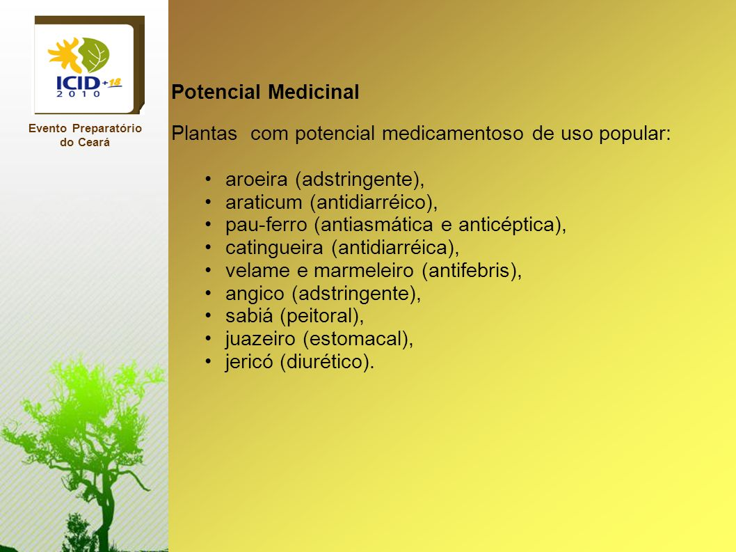 Potencial Medicinal Plantas com potencial medicamentoso de uso popular: aroeira (adstringente), araticum (antidiarréico), pau-ferro (antiasmática e an