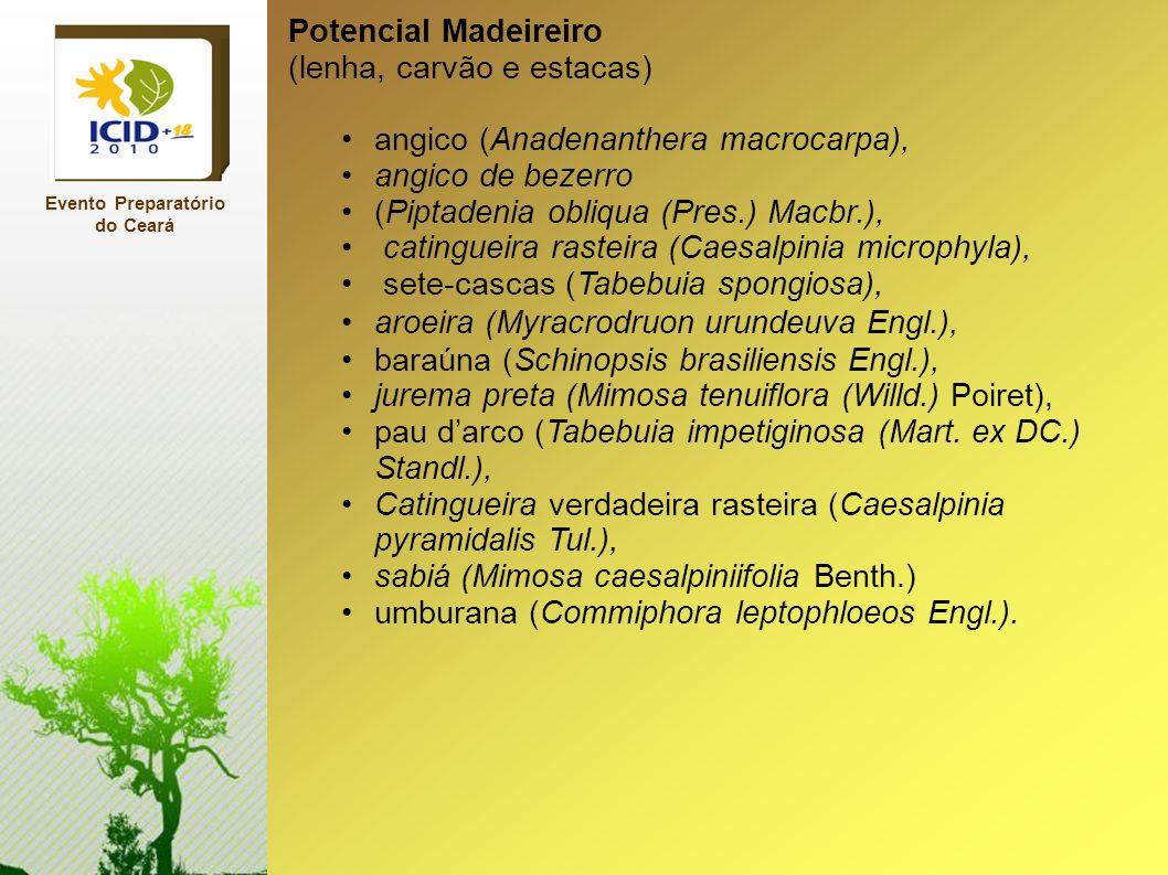 Evento Preparatório do Ceará Potencial Madeireiro (lenha, carvão e estacas) angico (Anadenanthera macrocarpa), angico de bezerro (Piptadenia obliqua (
