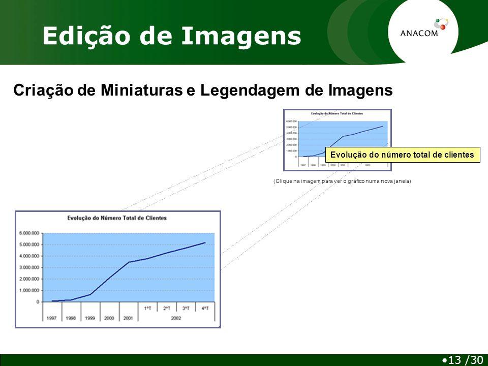 Edição de Imagens Criação de Miniaturas e Legendagem de Imagens (Clique na imagem para ver o gráfico numa nova janela) Evolução do número total de clientes 13 /30