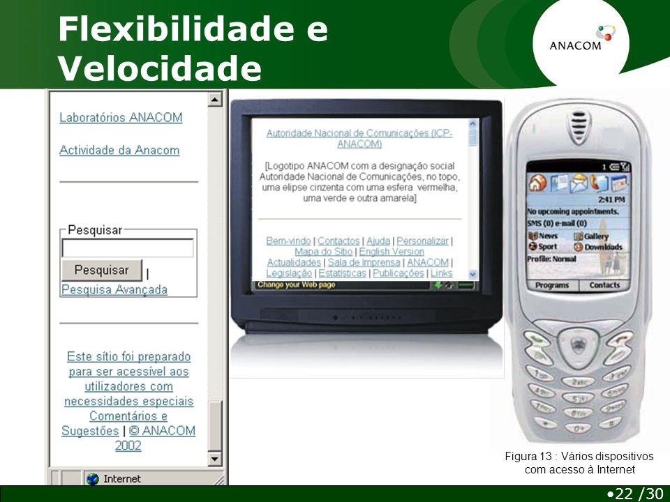 Flexibilidade e Velocidade 22 /30 Figura 13 : Vários dispositivos com acesso à Internet