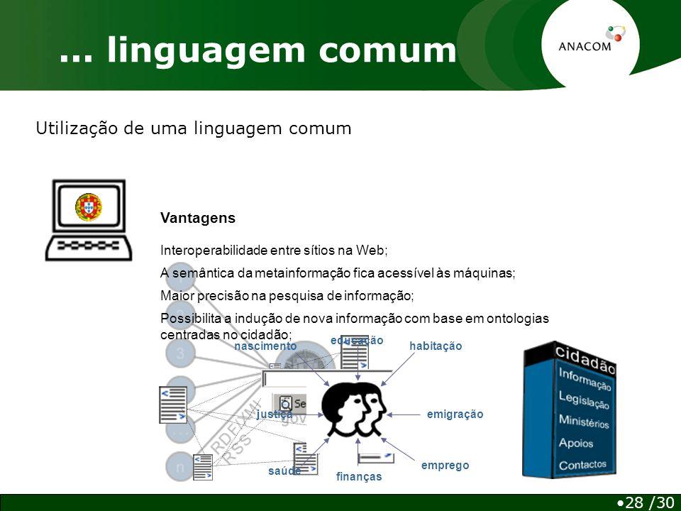 Utilização de uma linguagem comum...