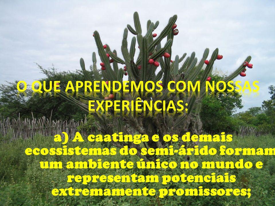 a) A caatinga e os demais ecossistemas do semi-árido formam um ambiente único no mundo e representam potenciais extremamente promissores;