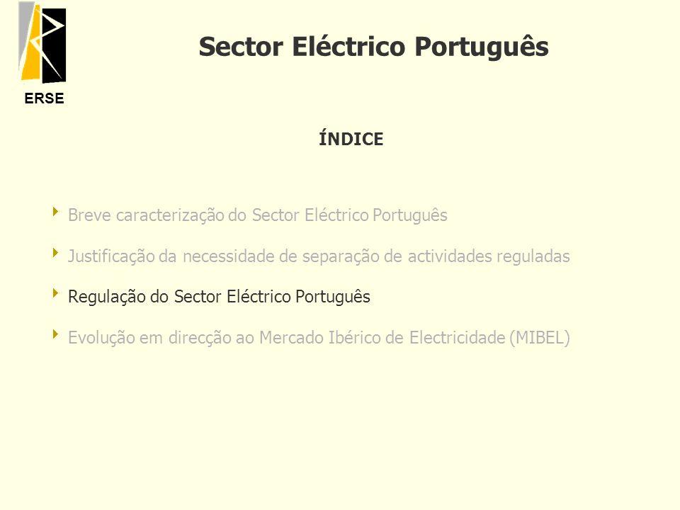 ERSE ÍNDICE Breve caracterização do Sector Eléctrico Português Justificação da necessidade de separação de actividades reguladas Regulação do Sector E