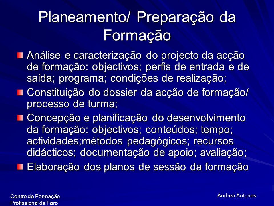 Planeamento/ Preparação da Formação Análise e caracterização do projecto da acção de formação: objectivos; perfis de entrada e de saída; programa; con