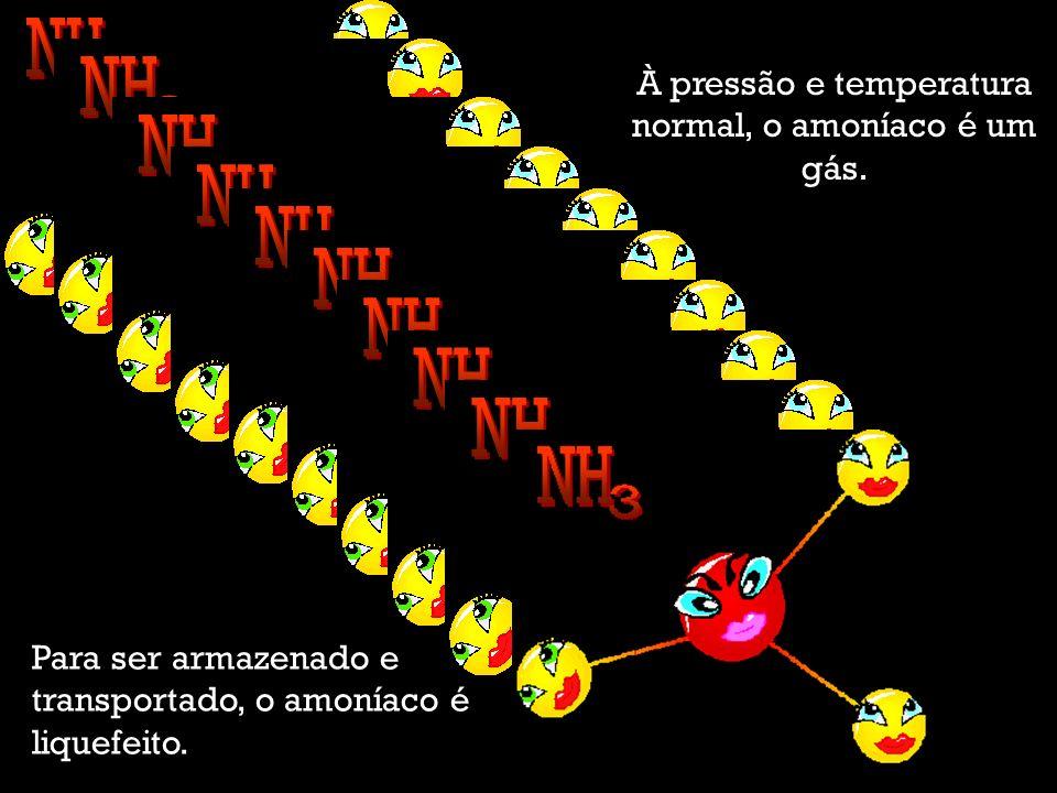 Trabalho elaborado por: Alexandra Mendes Gomes, Maria João Jervis, Natália Noronha e Teresa Umbelino.