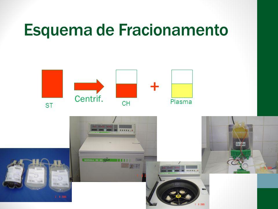 Esquema de Fracionamento + ST CHPRP Centrif.
