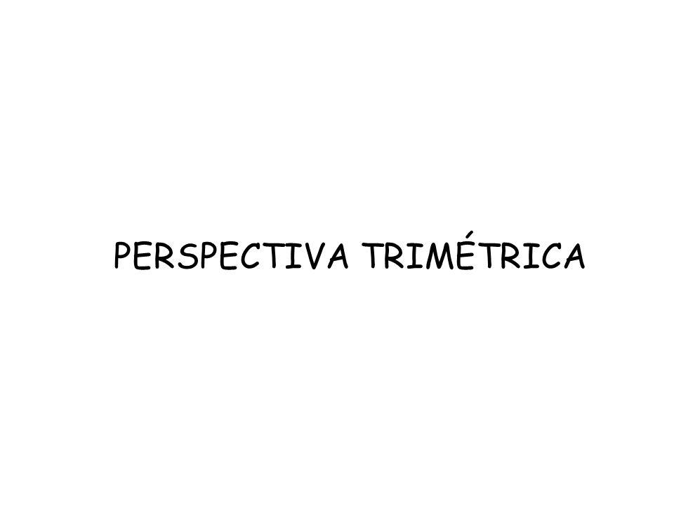 PERSPECTIVA TRIMÉTRICA