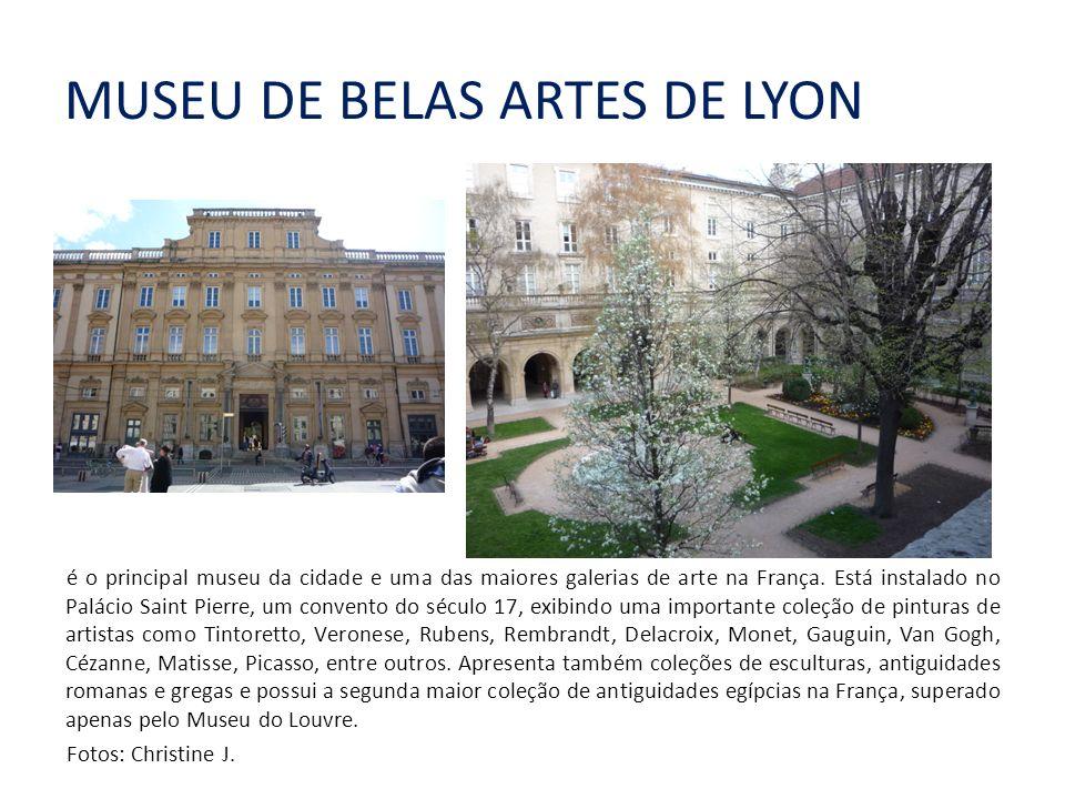 MUSEU DE BELAS ARTES DE LYON é o principal museu da cidade e uma das maiores galerias de arte na França.