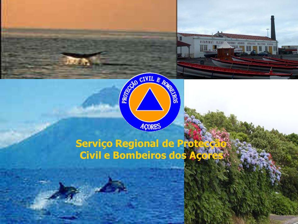 pedro.fc.carvalho@azores.gov.ptAER - Limoges 31MAR0926 Serviço Regional de Protecção Civil e Bombeiros dos Açores