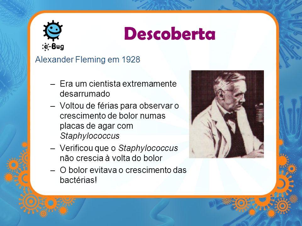 Descoberta Alexander Fleming em 1928 –Era um cientista extremamente desarrumado –Voltou de férias para observar o crescimento de bolor numas placas de