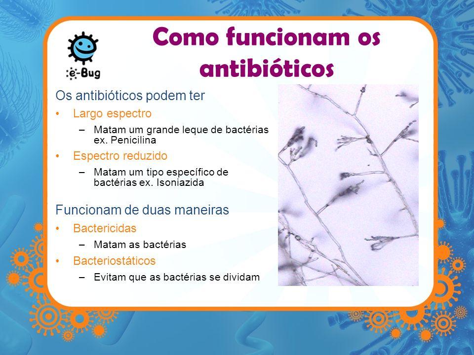 Como funcionam os antibióticos Os antibióticos podem ter Largo espectro –Matam um grande leque de bactérias ex. Penicilina Espectro reduzido –Matam um